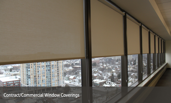 window coverings promark window film blinds inc