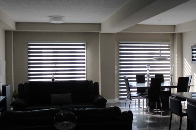 The Modern Look High Lite Roller Shades