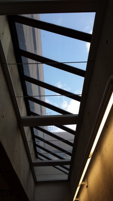 Skylight Blinds open